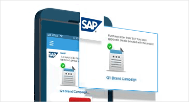 SAP Recommendation