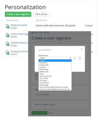 Personalization and User Segments