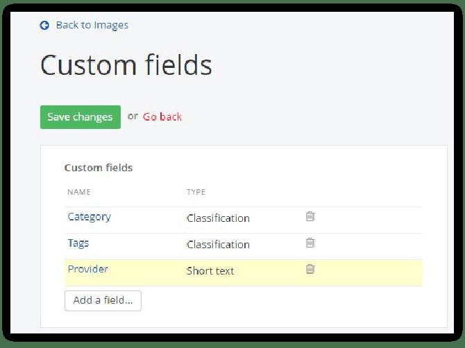 DAM-Custom Fields