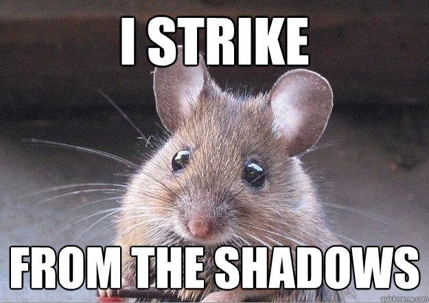 Mouse: I Strike from the Shadows