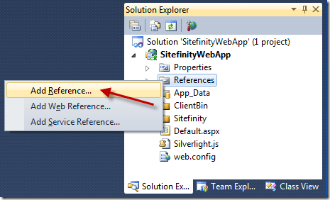 Adding assembly references to a Sitefinity 4.0 project using the Visual Studio Solution Explorer