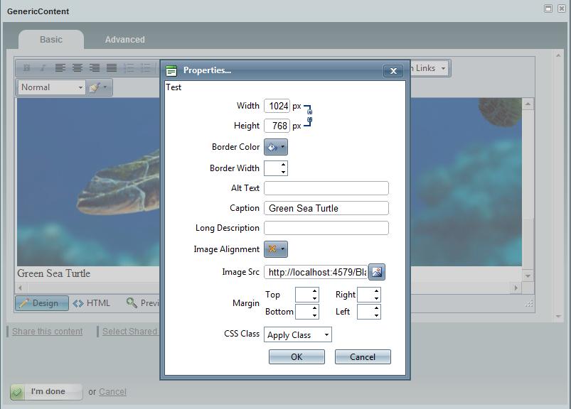 Set image properties dialog