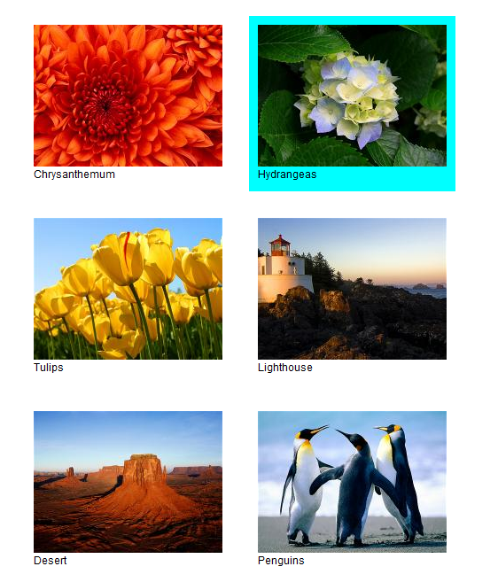 A simple image selector