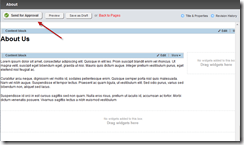 Sitefinity-4-RC-Workflow-Edit-Page