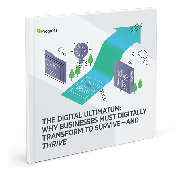 The Digital Ultimatum: What's your plan, by Progress