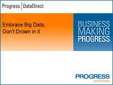 Embrace Big Data, Don't Drown in it