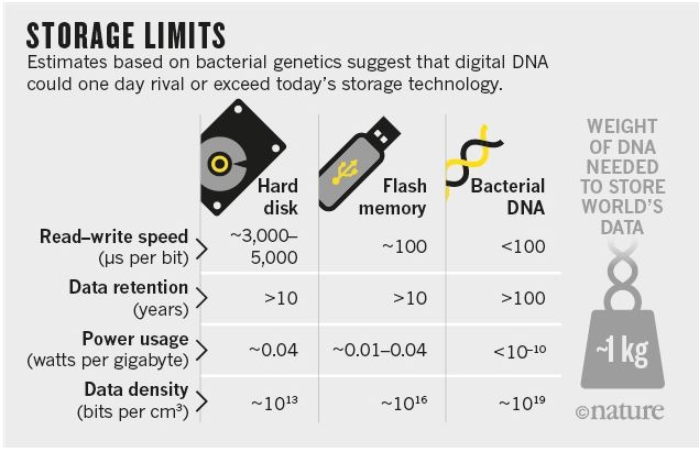 DNA Data Storage Technology Available Now on Amazon