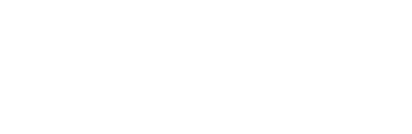 State Electric Logo White