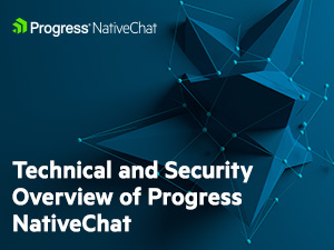 nativechat-300x225