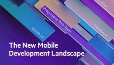 New_Mobile_Dev_Ebook_Progress_Website_Thumbail