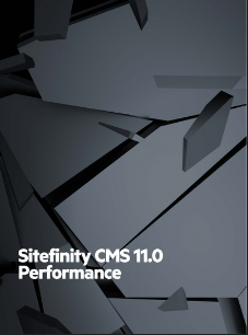 Sitefinity CMS Performance