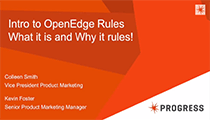 Introduction to OpenEdge Rules Part 1