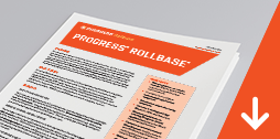Overview: Progress Rollbase