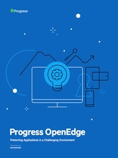 OpenEdge Protecting Applpications Whitepaper