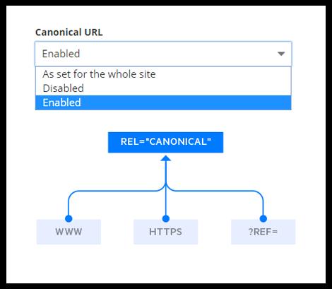 canonical-urls