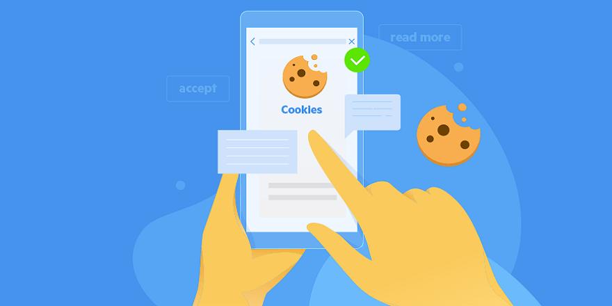 Chrome 80 Cookies