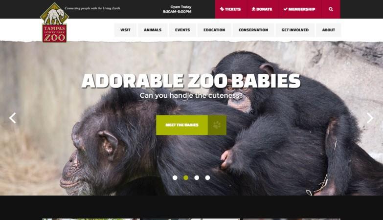 Tampas Lowry Park Zoo