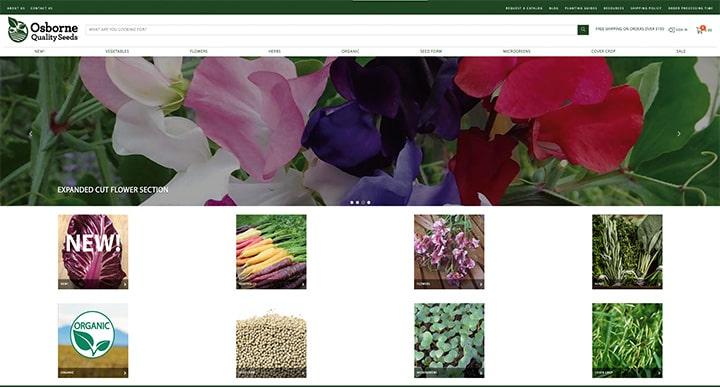 Website thumbnail